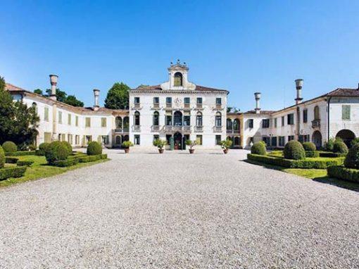 Treviso Prosecco and Tiramisù